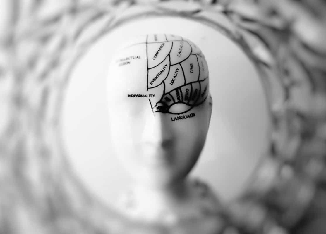 Effets du thé noir sur le cerveau
